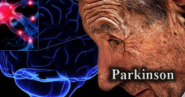 diferentes enfermedades del cerebro degenertivas