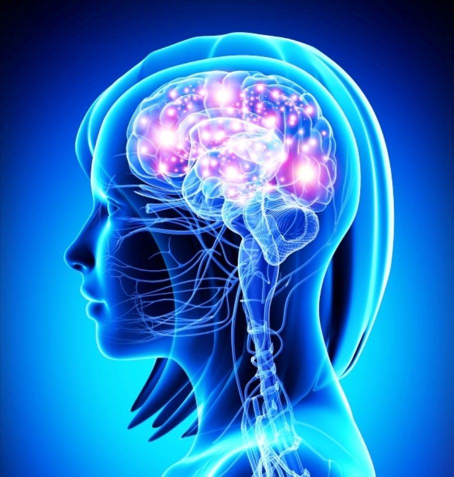 inflamacion-del-cerebro-por-estres-3