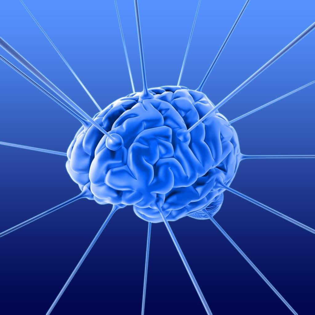 anoxia cerebral