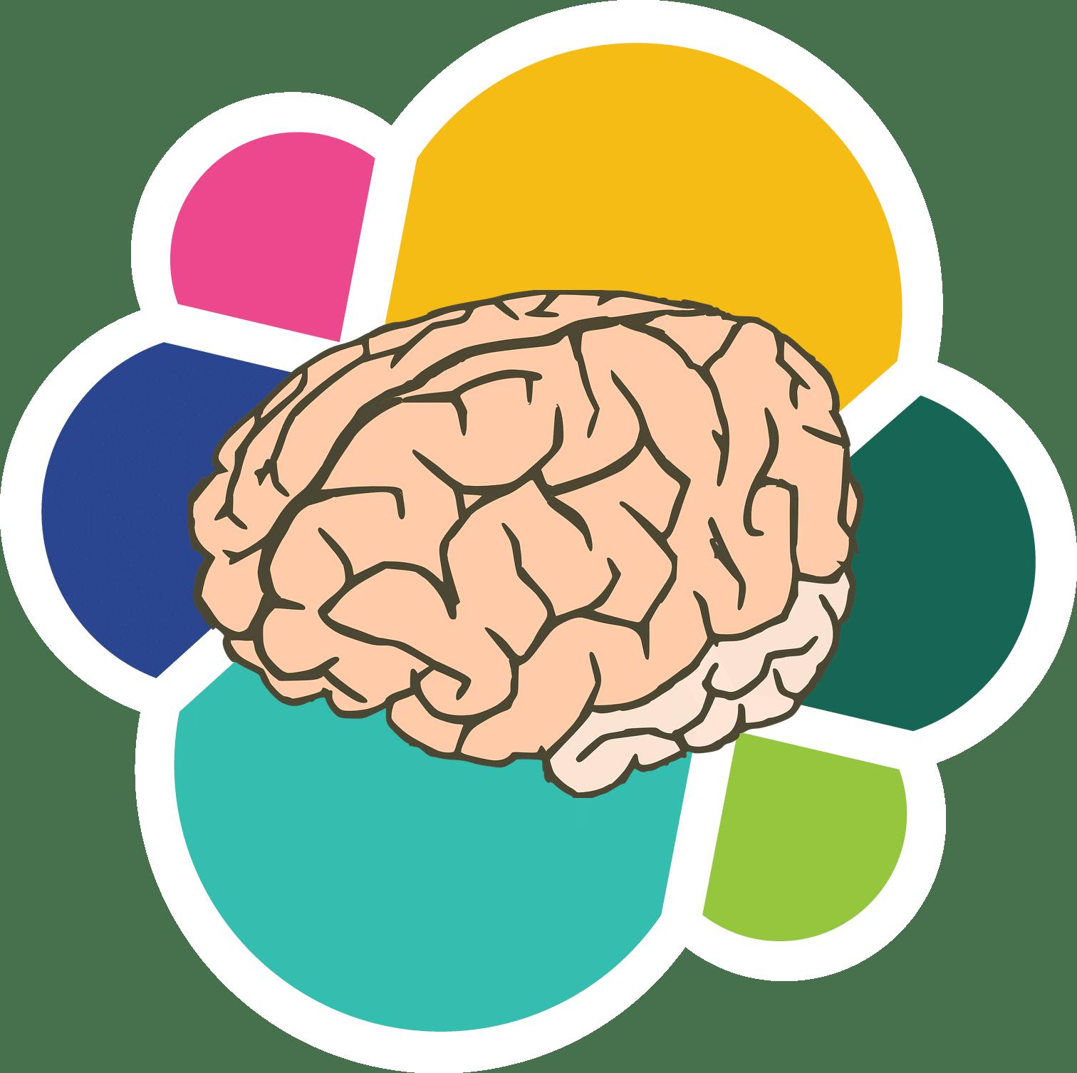 Cerebro sobre fondo de colores