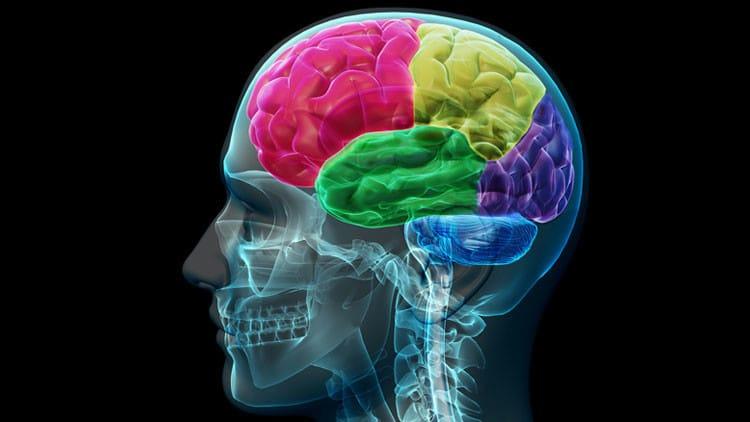 que es microcefalia