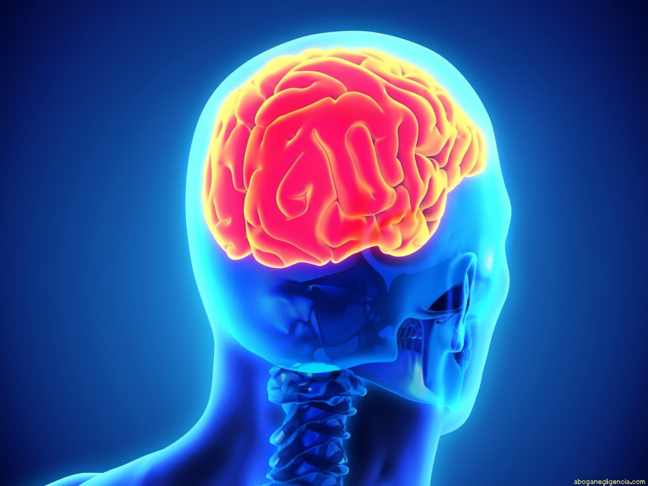 que es un tumor cerebral