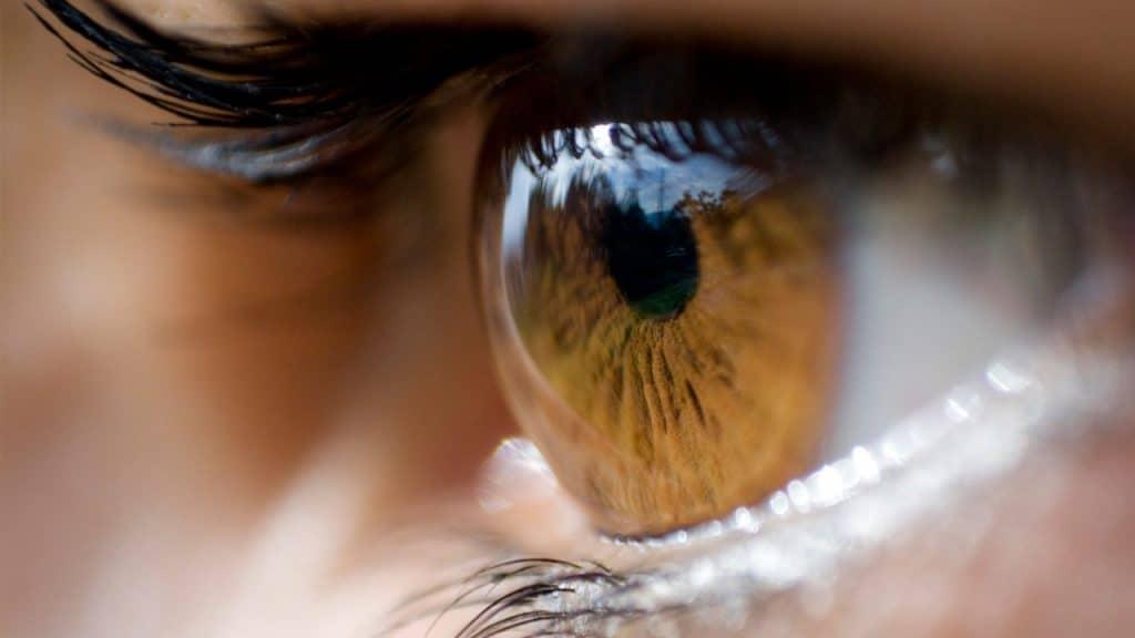 Enfermedades-oculares-o-de-los-ojos-19