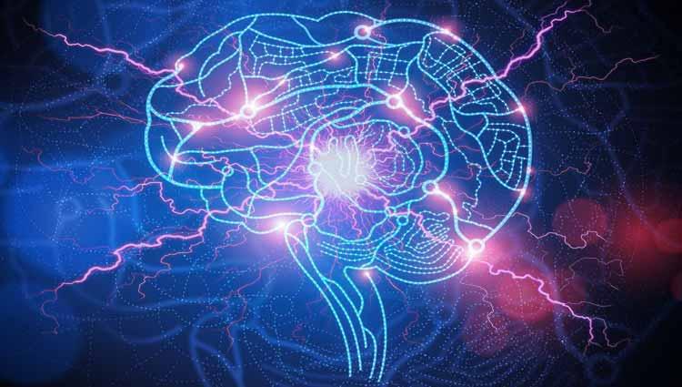 epilepsia 7