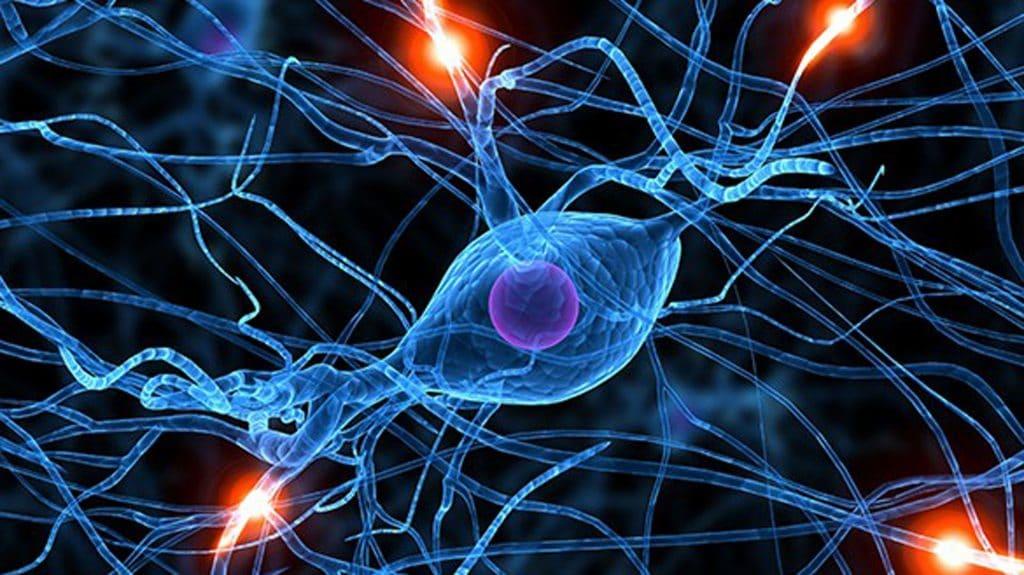 Esclerosis-lateral-amiotrófica 24