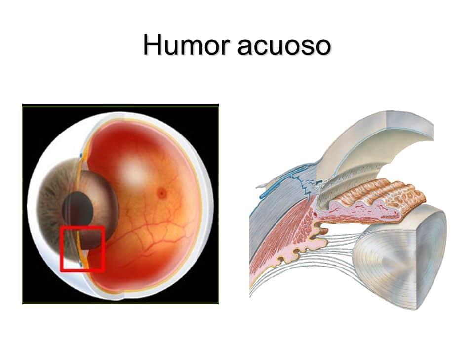 presion-intraocular-2