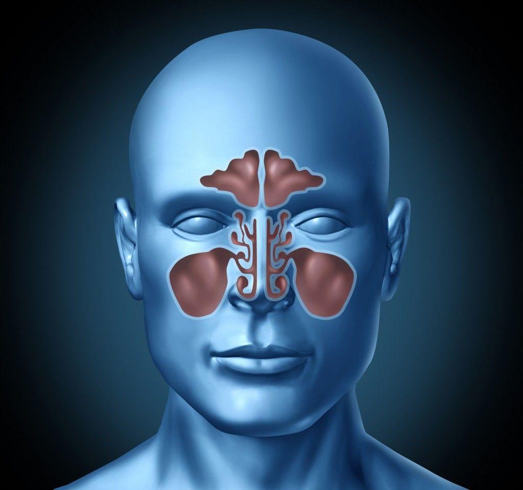fisura en el tabique de la nariz