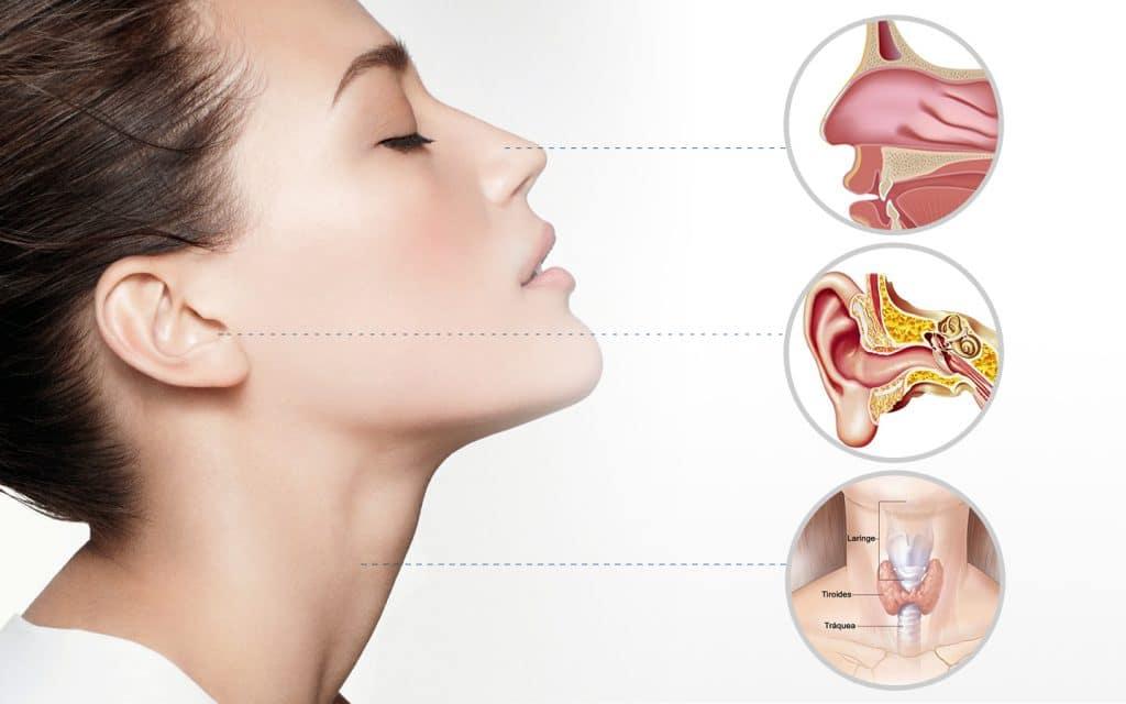 Nariz oído y garganta se ven afectados por la Rinitis