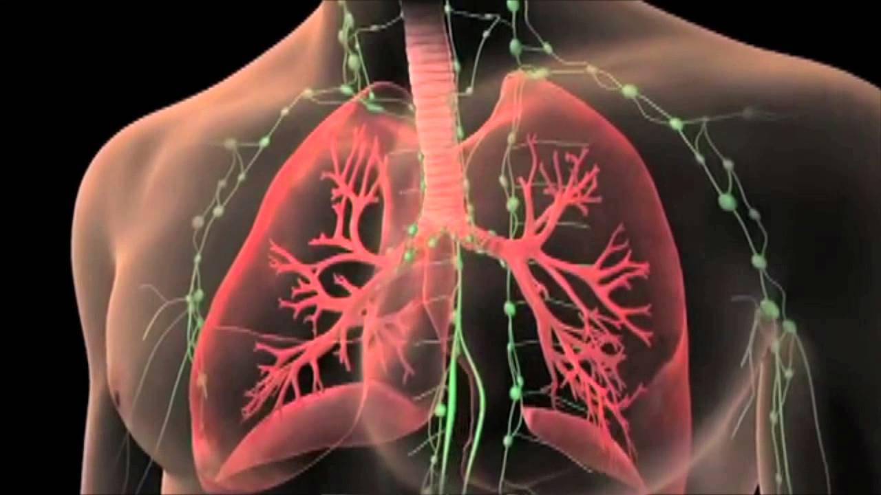 Trasplante de pulmón
