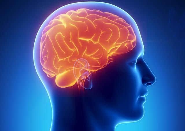amebiasis y su tratamiento cerebral