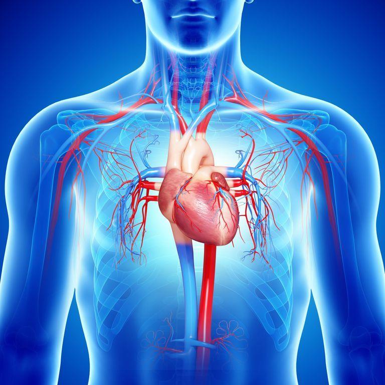 la insuficiencia cardiaca