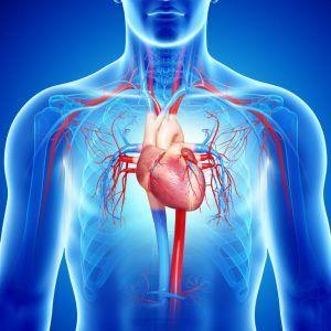 Tratamiento de insuficiencia cardiaca
