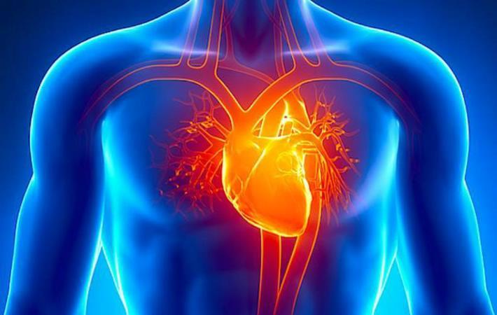 soplos cardiacos principal