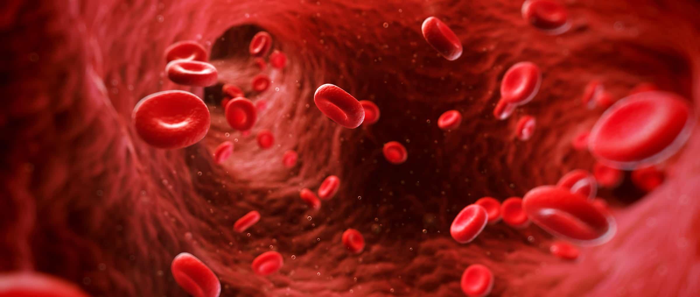 la hemostasia